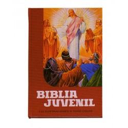 BIBLIA JUVENIL 1 TOMO MOD. 1